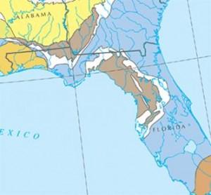 The Floridan Aquifer (in blue)