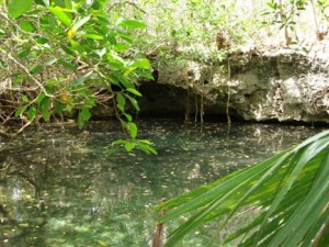 Cenote Camilo, named in memory of Don Camilo.
