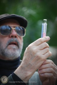 Dr. Aaron Mills of the University of Virginia checks the alkalinity in a water sample from DeLeon Springs.