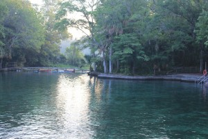 The main basin at Wekiwa Springs State Park